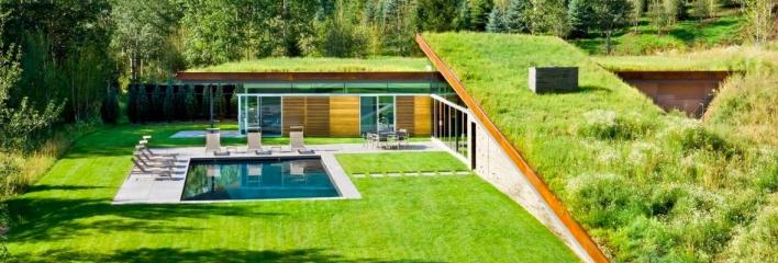 Tout savoir sur la toiture végétalisée